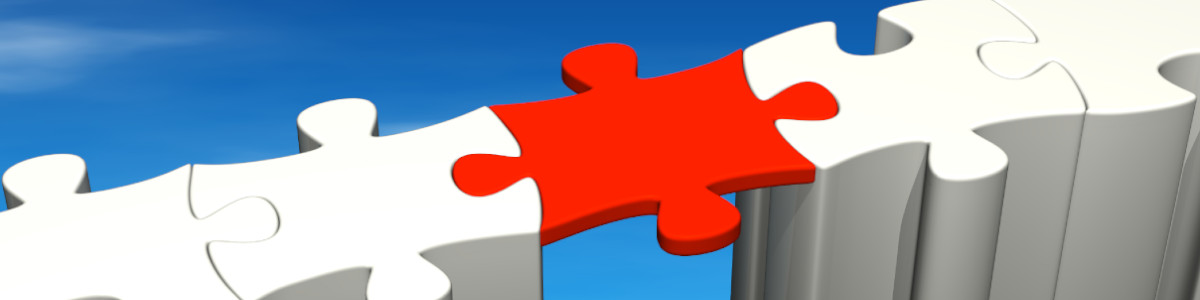 middle management enligne-sk com : cv, jobs, assignments and